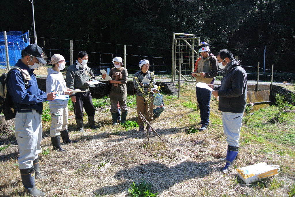 柚子の木の剪定講習会開催