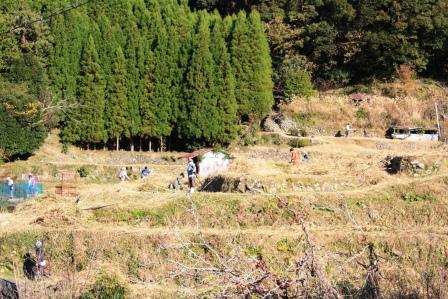 青年会が小阪の草刈りに協力